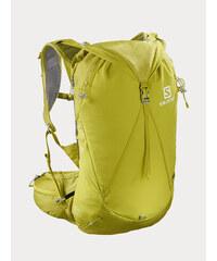 23f38de05 batoh Salomon Peak 30 - Acid Lime/Surf The Web - Glami.cz